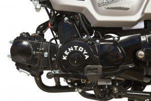 Mopedo 50 4T